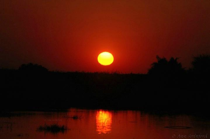 Okavanga sunset