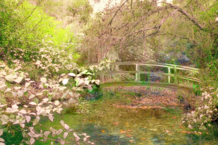 Lynn's Monet