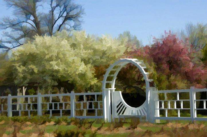 Dogwoods and redbuds  - Springtime at the Gardens