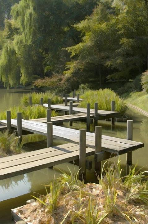 Board walk at the Japanese Garden