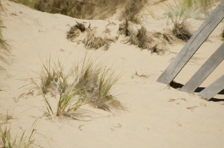 Beach in Door County, Wisconsin