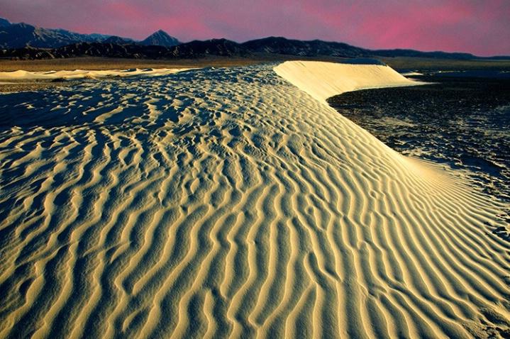Mesquite Dunes At Sunrise