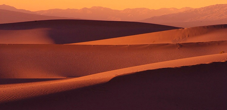 Dunes in Panorama