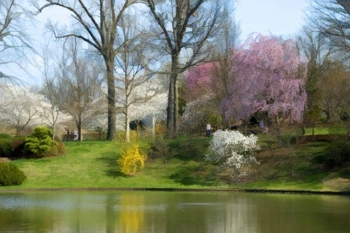 Springtime at the St. Louis Botanical Gardens