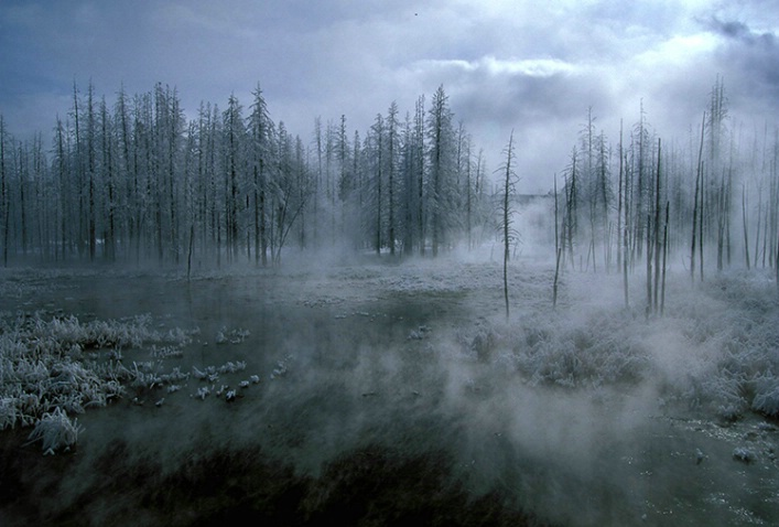 Yellowstone Mood
