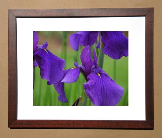 walnut_framed_picture