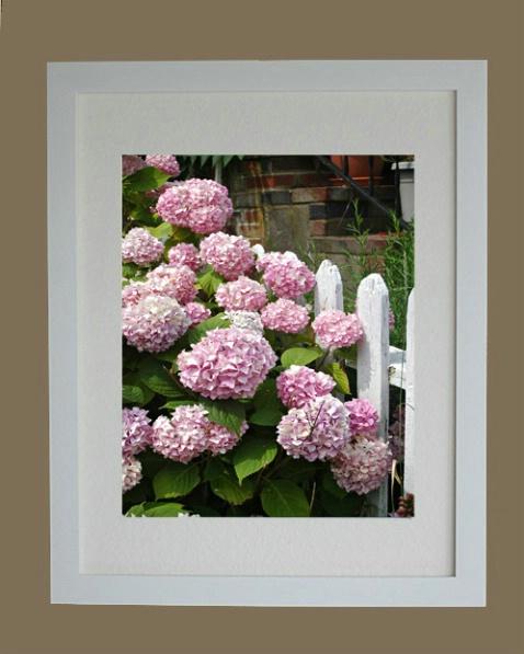 white_framed_picture