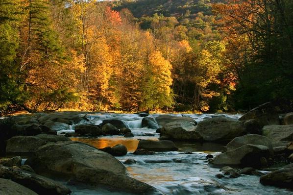 Williams River, Pocahontas Co., WV - hortizontal