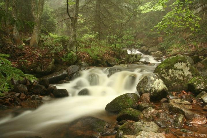 """Green river"""