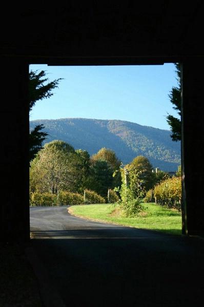 View through the Barn - Whitehall Vineyards, VA