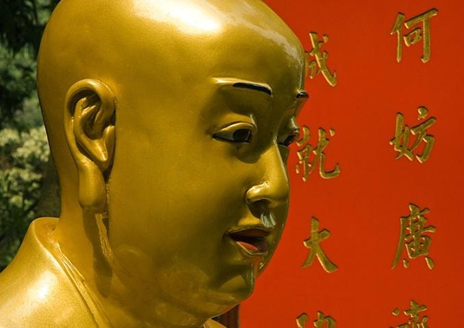 Inspired, 10000 Buddhas