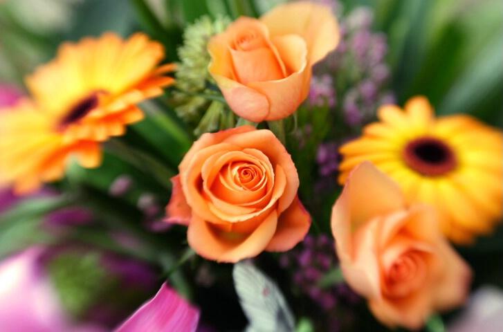 ~Blurry Bouquet~