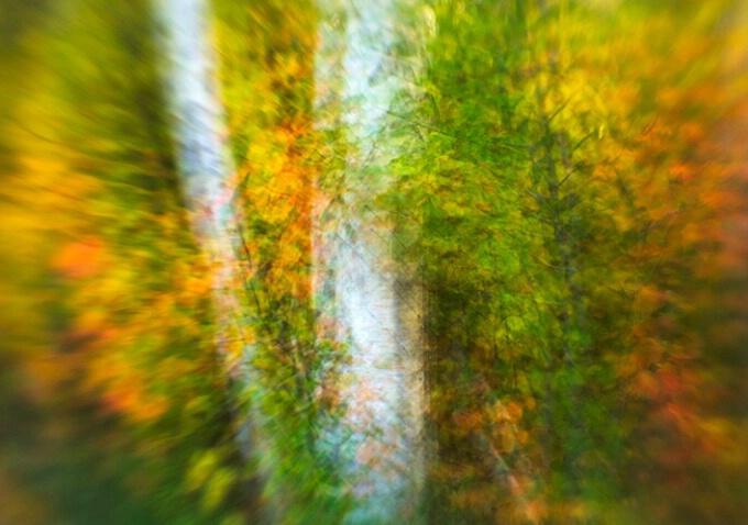 Fall impressions, New Hampshire
