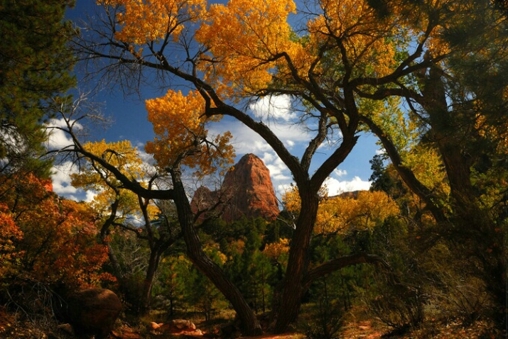 Fall in Kolob Canyons