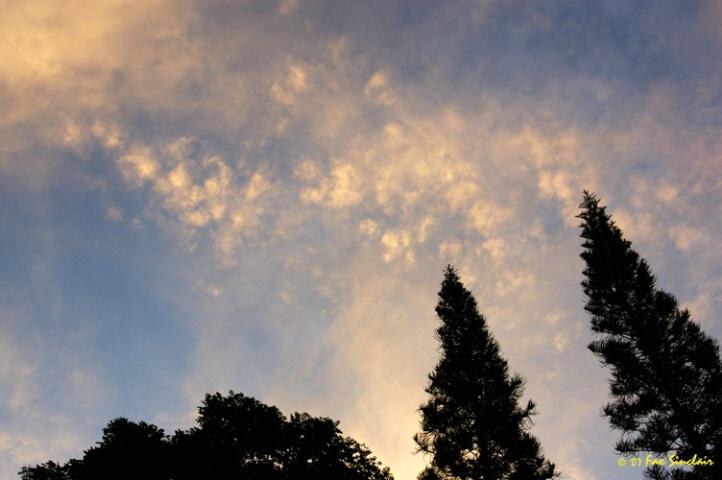 Dawn Over Rocky Farms