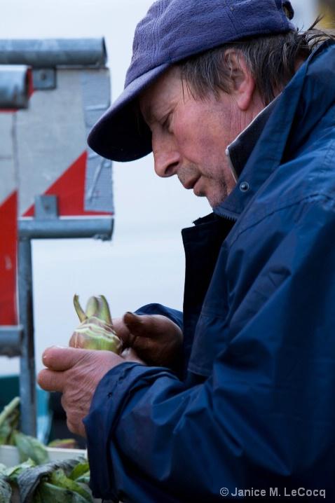 Artichoke Vendor in Campo Fiori