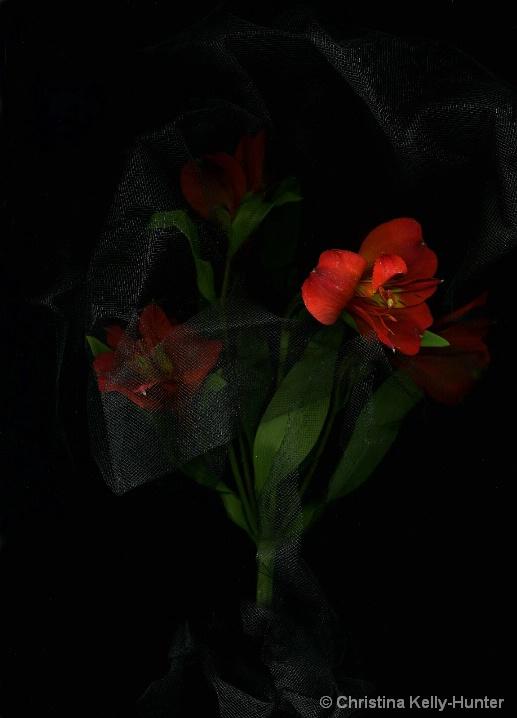 Flower Wisdom 56