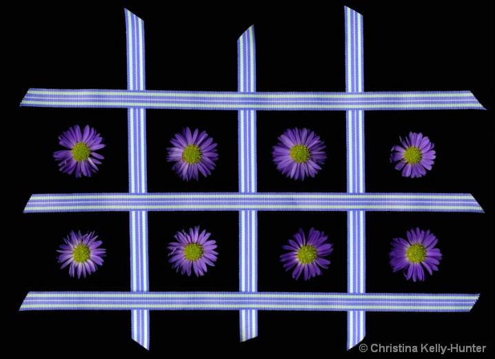 Flower Wisdom 63