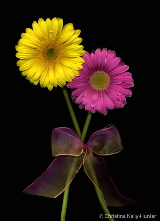 Flower Wisdom 54