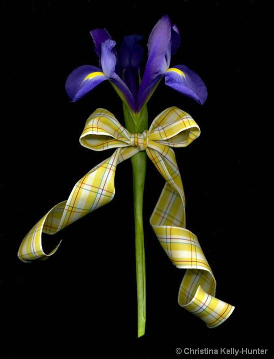 Flower Wisdom 76