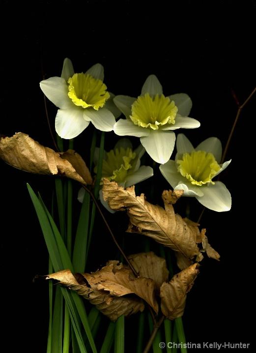 Flower Wisdom 98