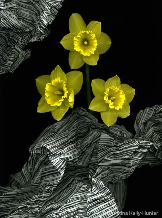 Flower Wisdom 102