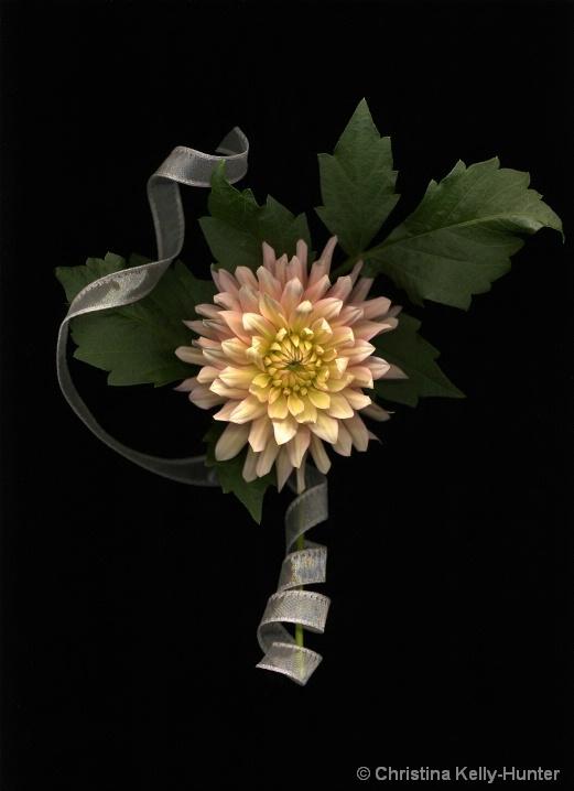 Flower Wisdom 103