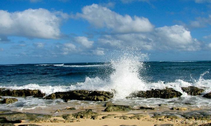 Turtle Bay Oahu, HI 2006