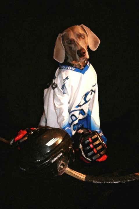 Got Hockey?