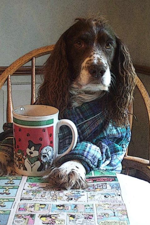 Keep Your Paws Off My Coffee!