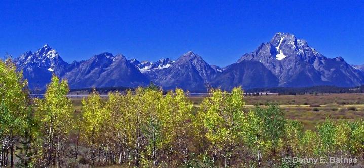 Willow Flats, Teton National Park-WY