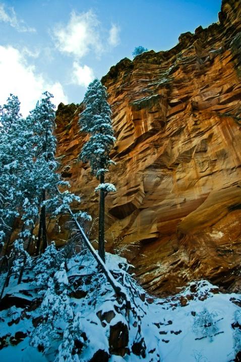 Sedona West Fork Ridge