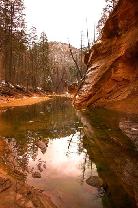 Sedona West Fork Reflection