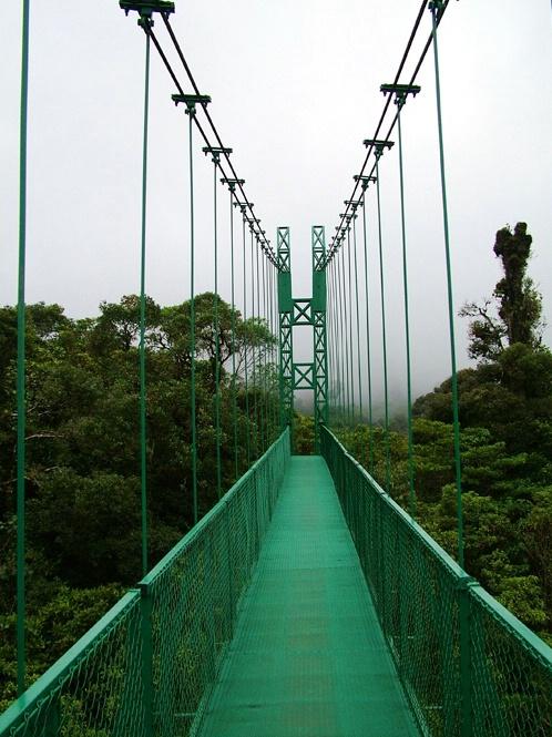 Tree Top Walk Way Costa Rica