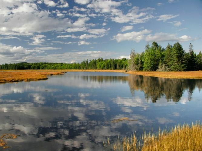 Maine Mirror