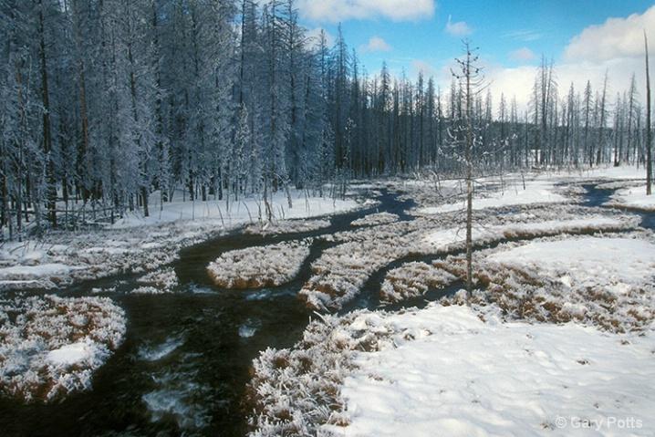 February Fantasy--Yellowstone