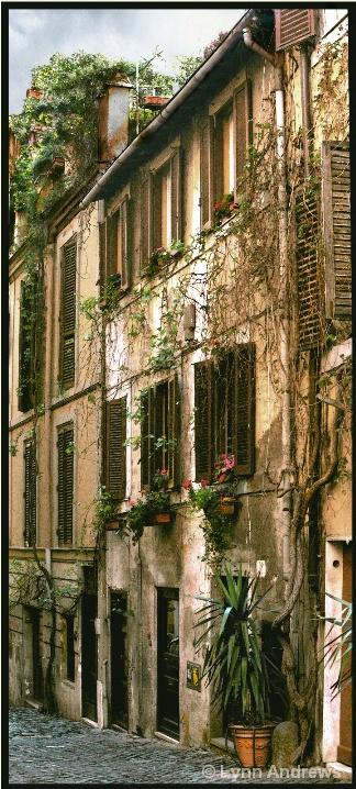 Quiet Street in Florence