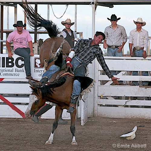 Out the gate on a bucking bronco