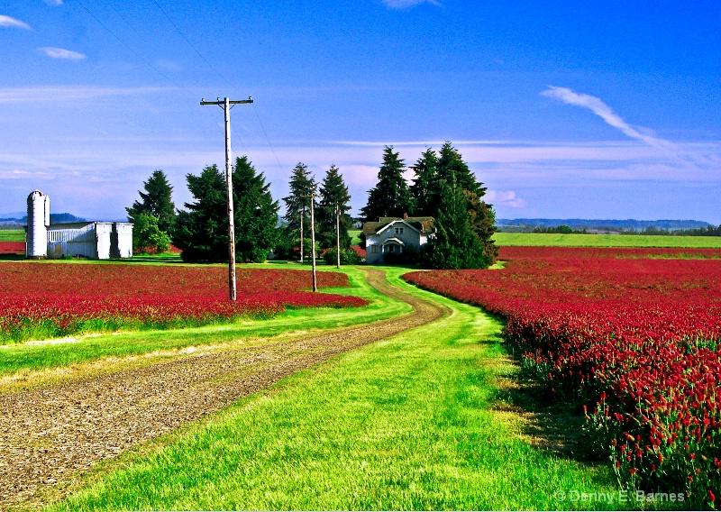 Red Clover, Oregon