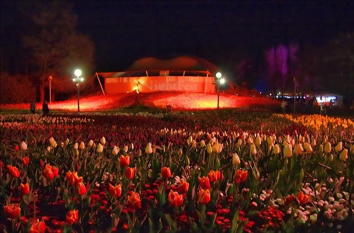 Floriade Nightfest, Canberra