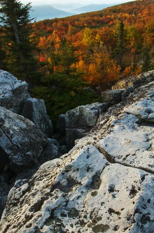bear-rocks-view