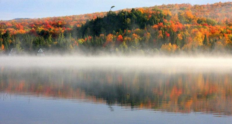 Rising Morning Fog
