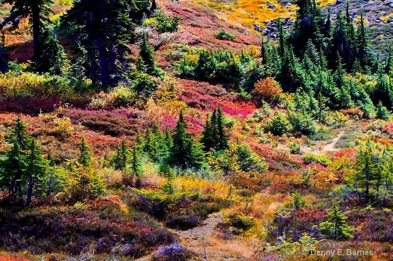 Heather Meadows, Mt Baker-Washington