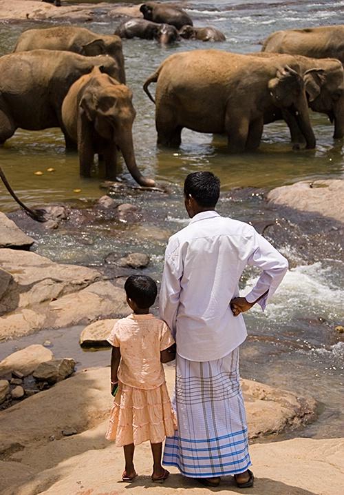 Observing, Kandy