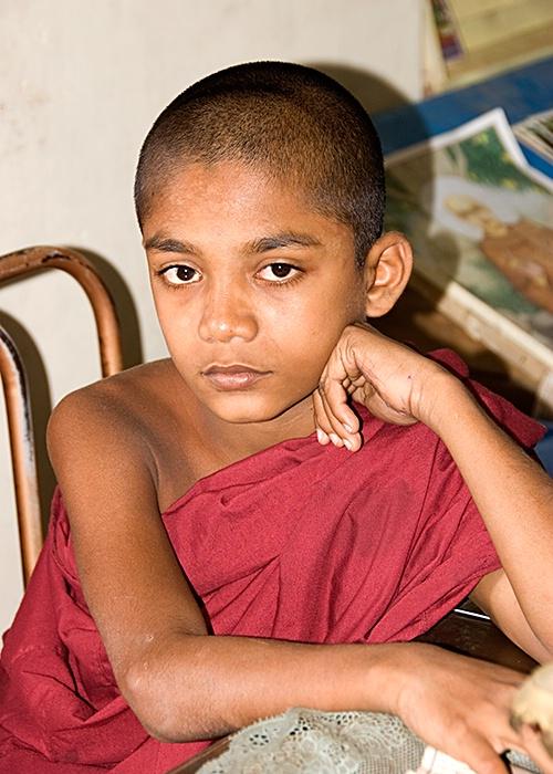 Nonchalant, Asgirya Maha Vihara, Kandy, Sri Lanka