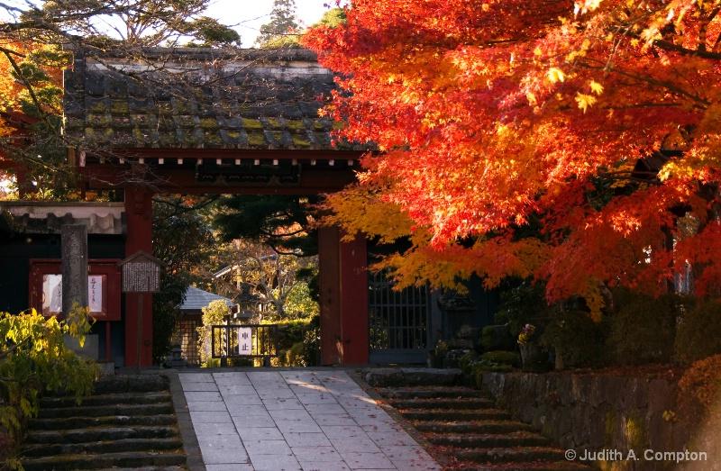 autumn temple sunset