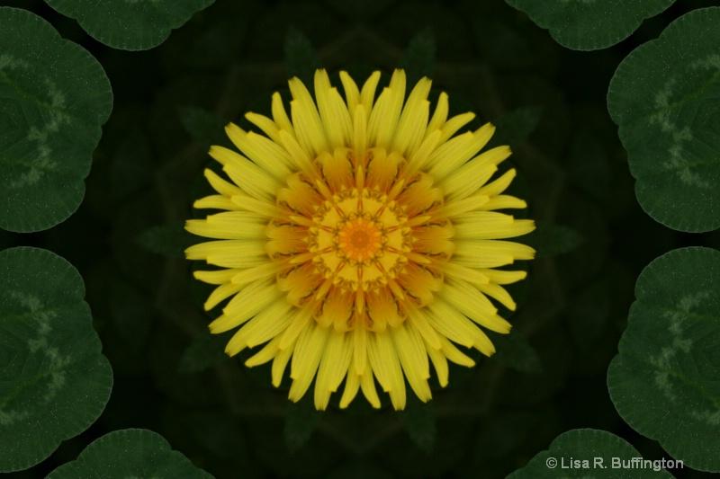 Dandelion In a Bed of Clover