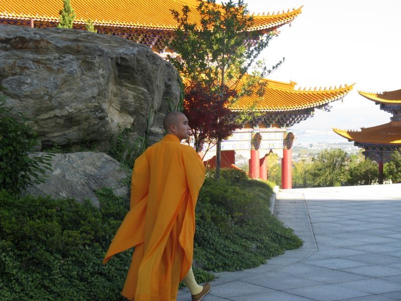 Temple Monk, Dali