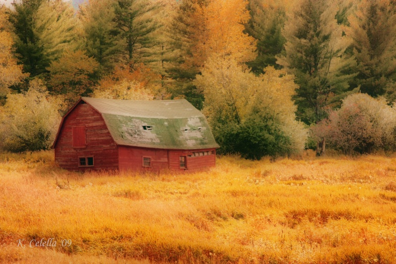 Barn In Amber