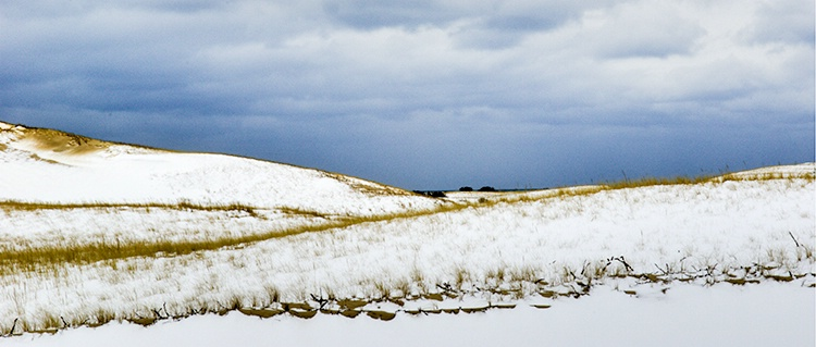 Winter Dunes Panoroma